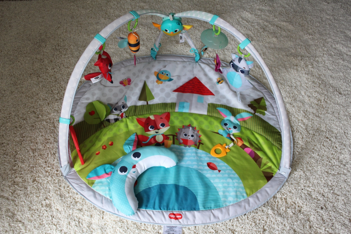 Activity Gym and Playmat